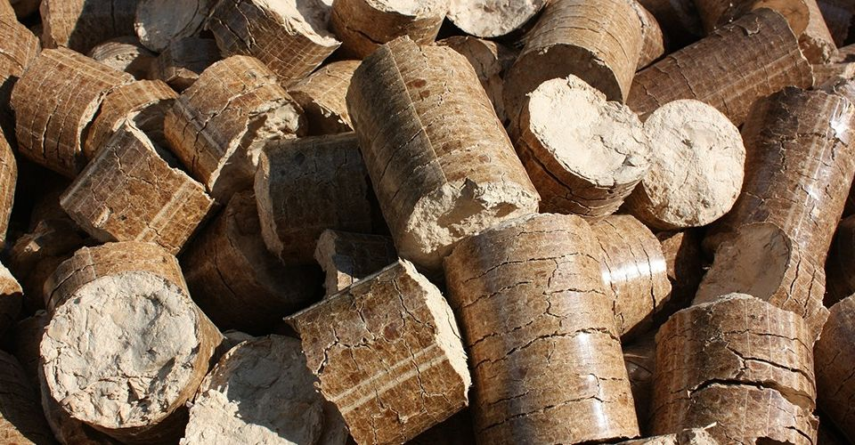 energia delle biomasse come si produce foto1